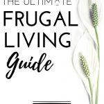 be frugal, best frugal living tips, definition of frugal, extreme frugal living, extreme frugal living tips, frugal, frugal definition, frugal ideas, frugal lifestyle, frugal living, frugal living blogs, frugal living groceries, frugal living ideas, frugal living on one income, frugal living saving money, frugal living tips, frugal meaning, frugal simple living, frugal tips, frugal vs cheap, frugality, frugality definition, frugality meaning, frugally, how to be frugal, how to live frugally, living frugal, living frugally, living thrifty and frugal, super frugal living, tight budget frugal living, what does frugal mean, what is frugal living