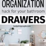 dollar tree drawer organizer